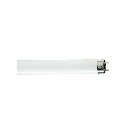 Picture of Linear Fluorescent Lamps