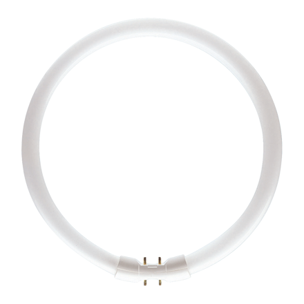 Picture of Circular Lamps