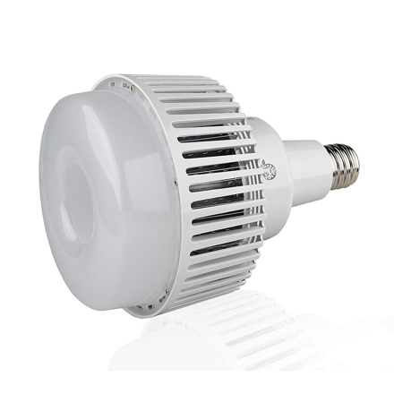 LED High Power Lamp 80W의 그림
