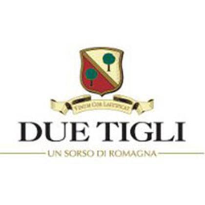 Picture for manufacturer Due Tigli