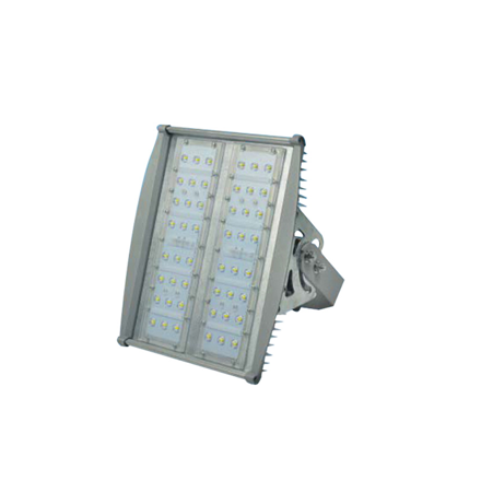 Picture of Firefly Led Floodlight EFL2010DL