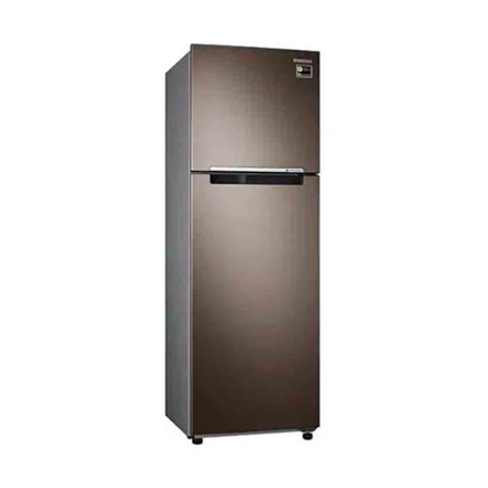 Picture of Refrigerator RT25M4033DX